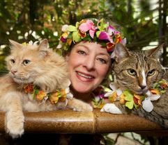Judi with kitties image