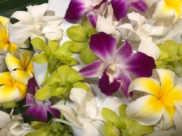 Loose Blooms Homepage Image image