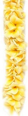 Plumeria Lei | Fragrant Lei