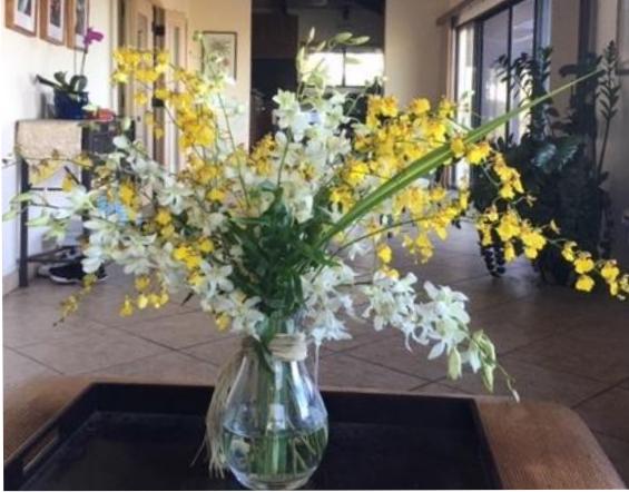 Royal Orchid Bouquet | Fresh Bouquets