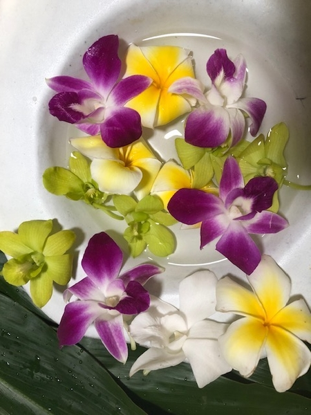 100 Fragrant Plumeria & Orchid Blooms