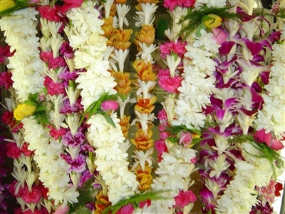 Lei of the Month | Aloha Gift of the Month