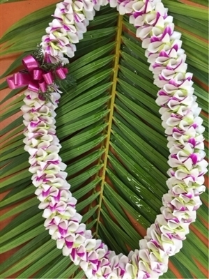 Maui Lei   Non-Fragrant Lei