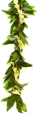 Image Green Foliage Lei