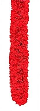 Image Double Carnation Lei